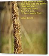 A Grain Of Wheat Canvas Print