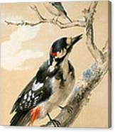A Great Spotted Woodpecked And Another Small Bird Canvas Print