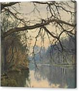 A Great Tree On A Riverbank Canvas Print