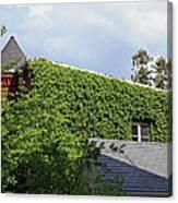 A Green House Canvas Print