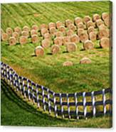 A Herd Of Hay Bales Canvas Print