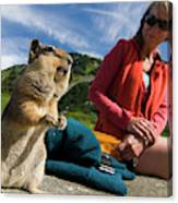 A Hiker Makes Friends With The Local Canvas Print
