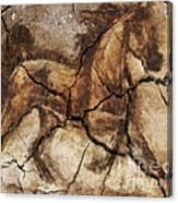 A Horse - Cave Art Canvas Print