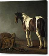 A Horse With A Saddle Beside It Canvas Print