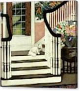 A House And Garden Cover Of A Cat On A Staircase Canvas Print