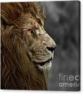 A King's Look Canvas Print