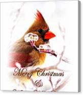 A Lady For Christmas - Cardinal Card Canvas Print
