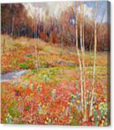A Landscape In Spring With A Nun Canvas Print