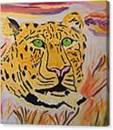 A Leopard's Gaze Canvas Print