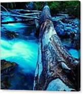 A Log Over Rapids Canvas Print