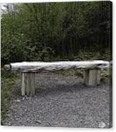 A Long Stone Section Over Wooden Stumps Forming A Rough Sitting Area Canvas Print