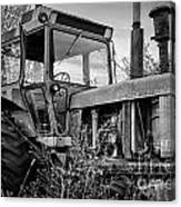 A Lonsome Deere Canvas Print