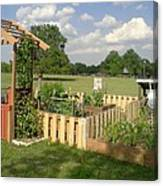 A Look At Growing Garden Canvas Print