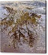 A Monet Moment IIi Canvas Print