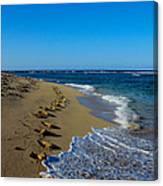 A Morning Walk On A Dominican Beach Canvas Print