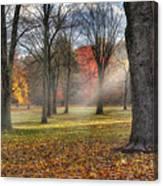 A November Morning Square Canvas Print
