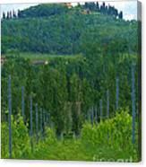 A Painting A Tuscan Vineyard And Villa Canvas Print