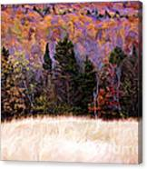 A Painting Autumn Field Canvas Print