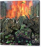 A Pair Of Albertaceratops Running Away Canvas Print