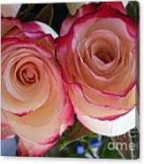 A Pair Of Roses  Canvas Print