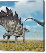 A Pair Of Stegosaurus Dinosaurs Canvas Print