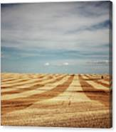 A Pattern Of Stripes Across A Farmers Canvas Print