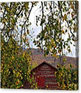 A Peak Of Fall Red Barn Canvas Print