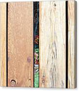 A Peek Through Wood Canvas Print