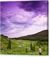 A Person Stand In A Field Watching Canvas Print