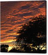 A Phoenix Sunset Canvas Print