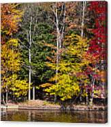 A Place To Relax In The Adirondacks Canvas Print