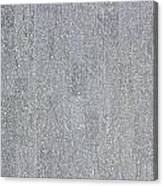 A Polished Grey Granite Wall Texture As Background Canvas Print