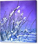 A Purple Winter Canvas Print