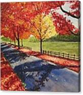 A Quiet Autumn Road Canvas Print