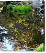 A Quiet Little Pond Canvas Print