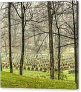 A Rainy Day At The Cemetery Canvas Print