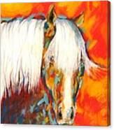 A Red Hot Head Canvas Print