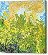 A Reflected Sky Canvas Print
