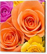 A Riot Of Roses Canvas Print