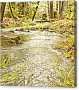 A River Of Green Canvas Print