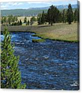 A River Runs Through Yellowstone Canvas Print