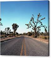 A Road Leads Through Joshua National Canvas Print