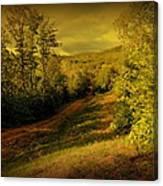 A Road Less Traveled Canvas Print