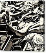 A Roar Of Thunder Canvas Print