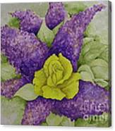 A Rose Among The Lilacs Canvas Print