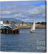 A Sailing Yacht Passes The Wharf In Sidney Harbour Canvas Print