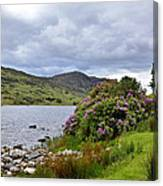 A Scene From Kerry Canvas Print