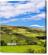 A Scottish Hillside Canvas Print