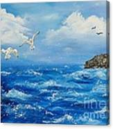 A Seagull's View George's Head Kilkee Co. Clare Canvas Print