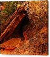 A  Slab Of Rock Canvas Print